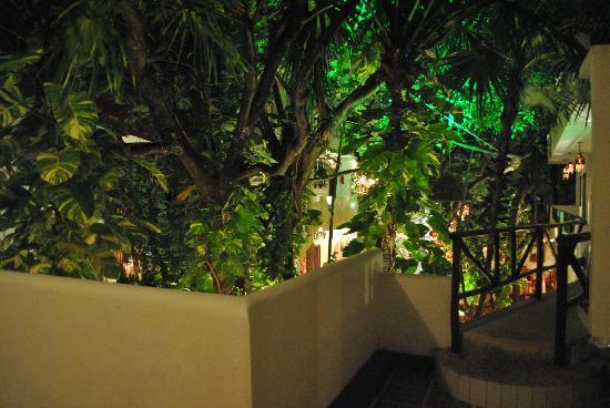 El Secreto Hotel: Jardin desde el 2do piso