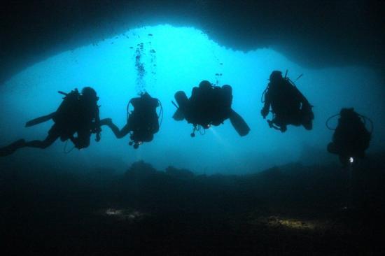 Hippo Divers
