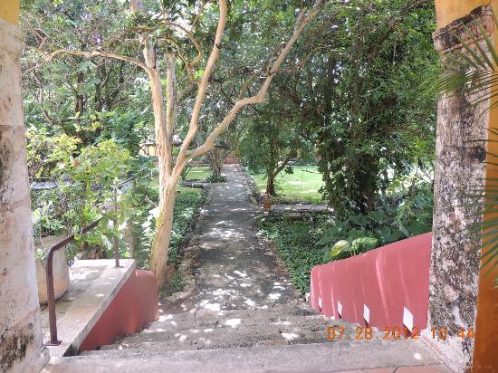 Hacienda Misne: Pathway