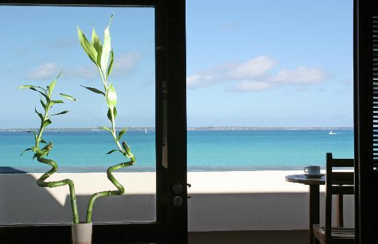 Le Petit Hotel: View