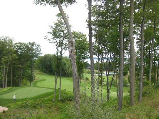LochenHeath Golf Club: view from the patio