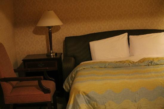 The Opal San Francisco: beds with dead limp pillows