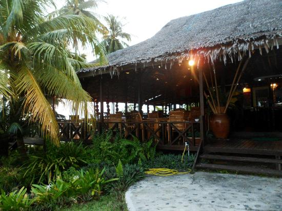 D'Coconut Resort: The resort compound