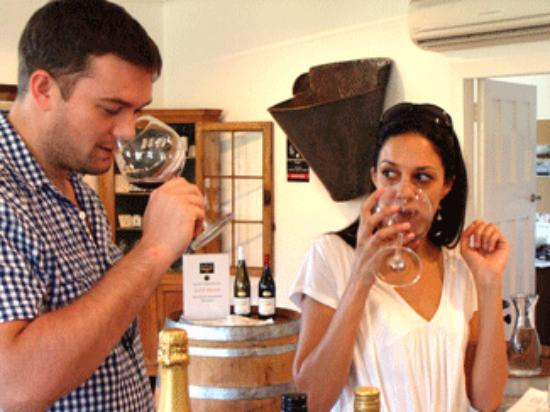 Pinot Thyme Wine Tours