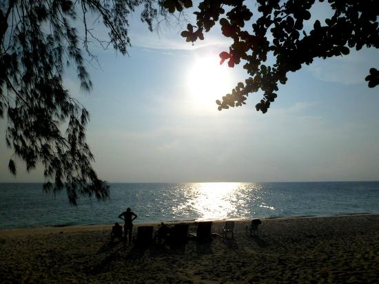 D'Coconut Resort: Sunsets