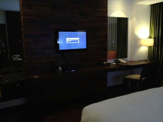 The Cocoon Boutique Hotel: The TV