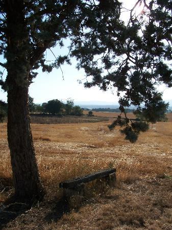 Agriturismo Saletta: sur le chemin de Saletta
