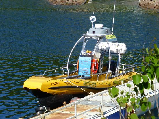 Croisières Neptune : le bateau...