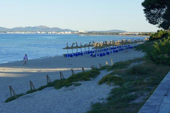 Iberostar Alcudia Park: Main beach area outside hotel