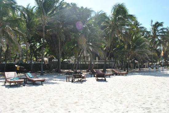 SheShe Baharini Beach Hotel: La spiaggia