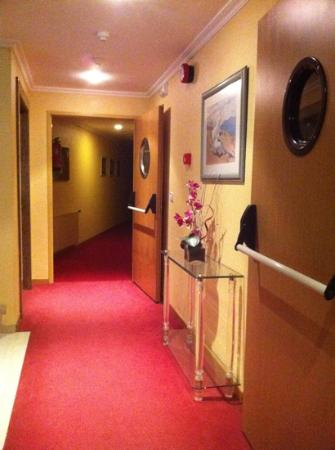 Hotel Maruxia: pasillos hotel