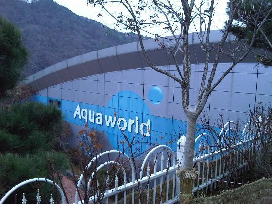 Daemyung Resort Gyeongju: aqua world