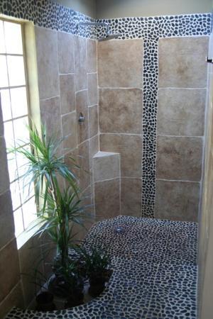 Hotel Troiz : Shower