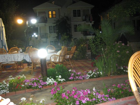 Milkway Apart Hotel: Night in the garden