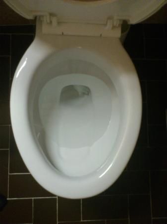 Parc Hotel Paris : toilettes