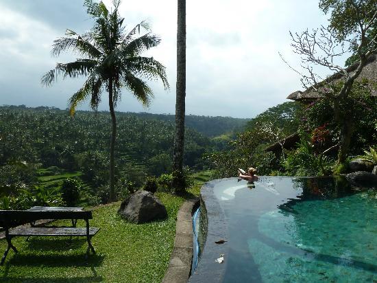 Taman Bebek Resort & Spa: petite piscine vue sur les rizières