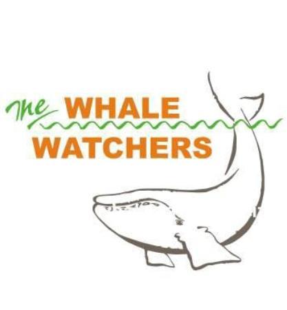 Whale Watchers Hermanus: The Whale Watchers logo