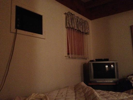 Wrens Nest Village Inn: AC and TV