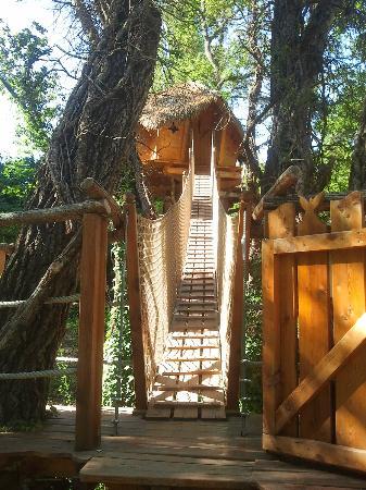 Les nes picture of les cabanes du varon flayosc tripadvisor - Les cabanes du trappeur ...