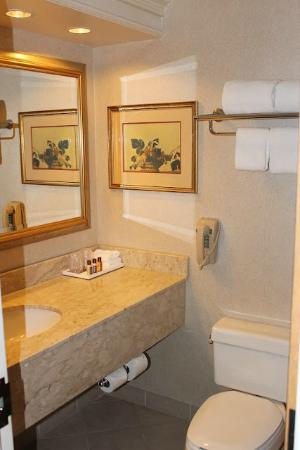 Sheraton Music City Hotel: Small but clean bathroom