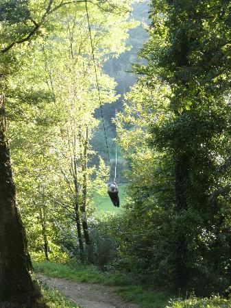 Carhaix-Plouguer, Prancis: la grande tyrolienne
