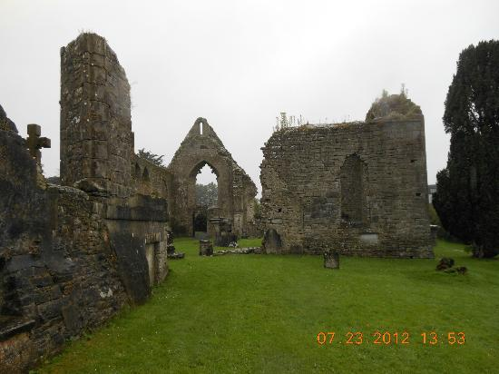 Roscommon Castle: Dominican Abbey