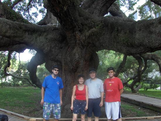 E2ride Bike Tours : Under the Treaty Oak Tree