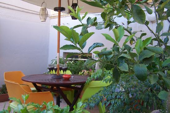 B&B In Centro: La terrazza - The terrace