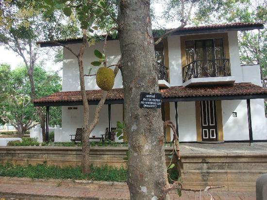 Cinnamon Lodge Habarana : hotel grounds