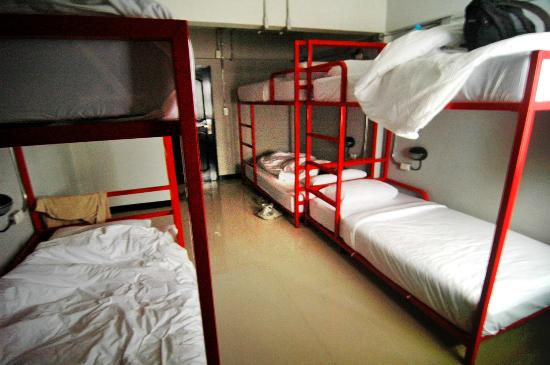 SOHOstel: Inside Dorm ( 6 bunk )