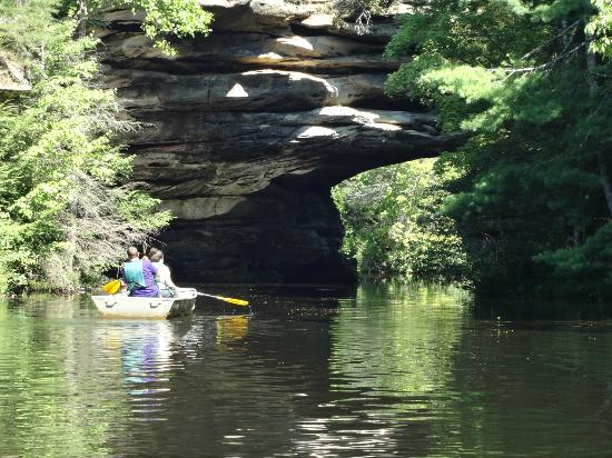 Pickett State Park and Forest: Canoe Trip