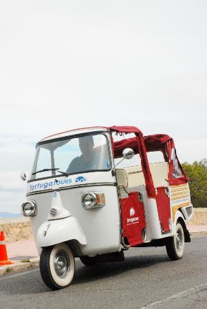 Tortuga Tours Alicante