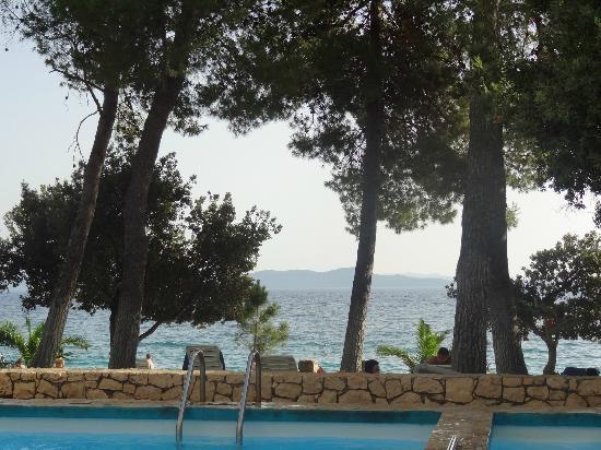Villa Nela: le jardin