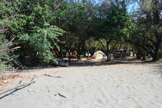 Camp Olowalu : Front Tent area from the beach