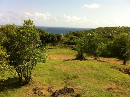 Les Islets Fleuris : le jardin