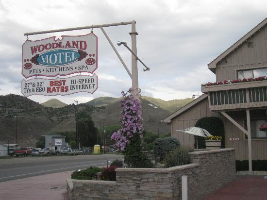 Woodland Motel: Mountain views