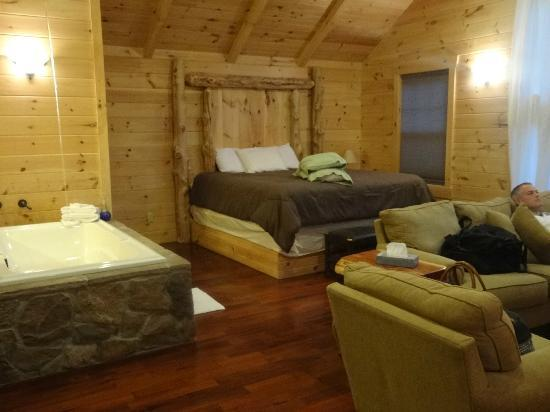 Pine Cove Lodging: The living area