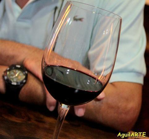 El Rincon De Juan The Wine Bar: Una Copa De Cerro Añon