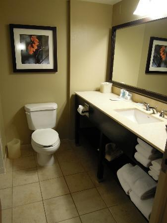 Wyndham Cleveland at Playhouse Square: Bathroom