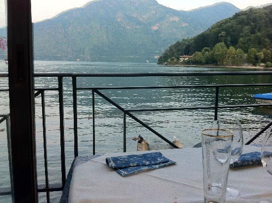 Albergo Plinio : table sur la terrasse
