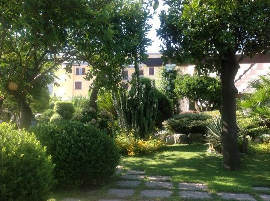 La Medusa Hotel & BoutiqueSpa: jardin