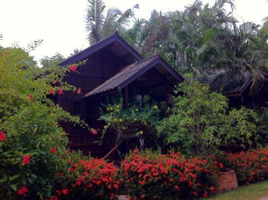 Pak Chiang Mai: villaggio del loto