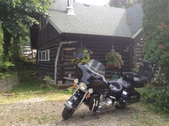 Nakusp, Canada: Cozy Cabin B & B