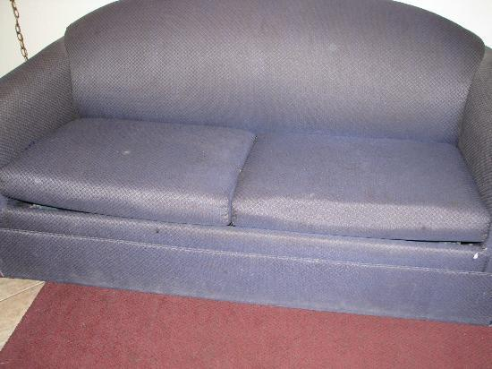 Motel in the Pines: Dirty sofa bed