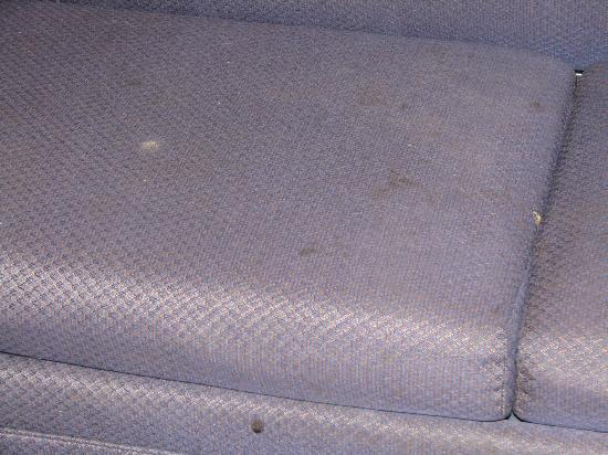 Motel in the Pines: close up of sofa bed