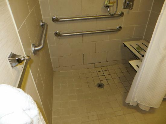 The Westin Princeton at Forrestal Village: Washroom 1