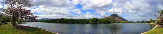 The River House: Vue du jardin