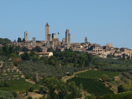 Agriturismo Poggiacolle: Ausblick vom Pool (und aus unserem Zimmer) rüber nach San Gimignano