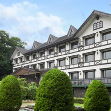 Hotel Green Plaza Fuji