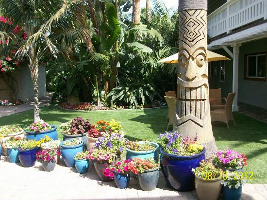 Ocean Palms Beach Resort: tropical grounds